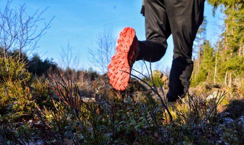 Trailrunning in Sweden