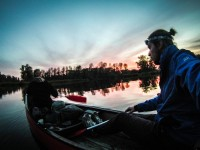 Canoeing in National Park De Biesbosch