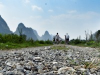 Bikes and buffaloes in Yangshuo