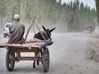 Verhalen uit mijn dagboek #2 – Xinjiang